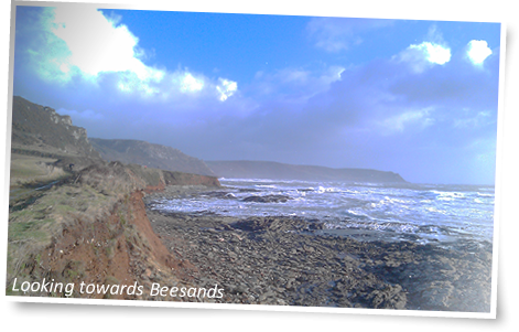 CTS Devon Ultra view to Beesands