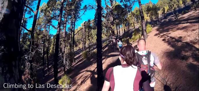 Transvulcania 2015 - climbing to Las Deseadas