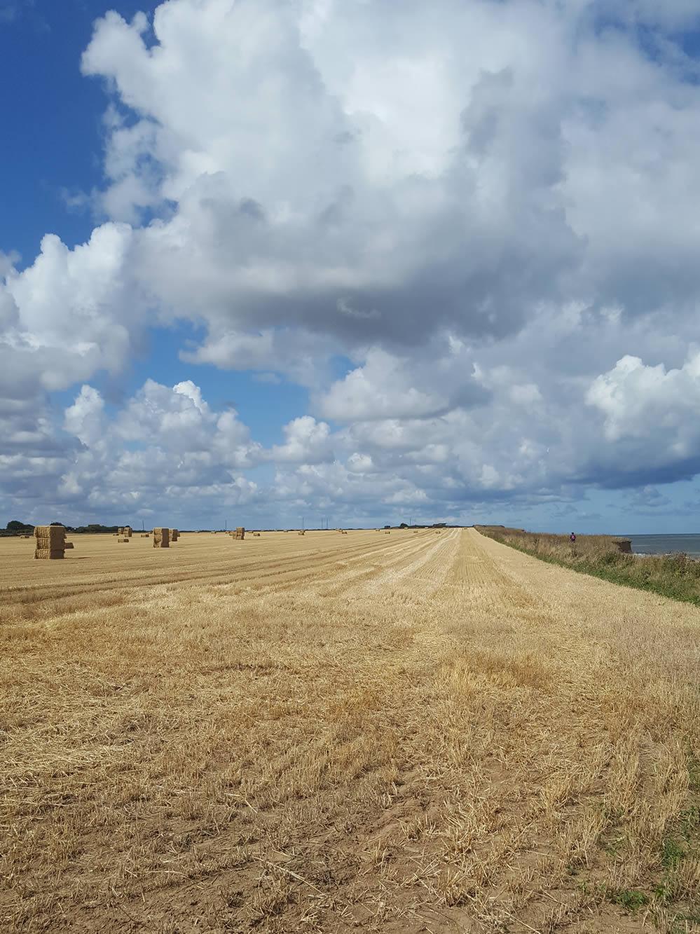 haybails on the north norfolk coastal path