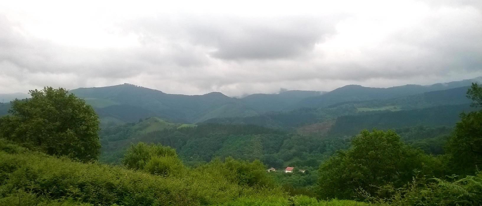 Lesaka views